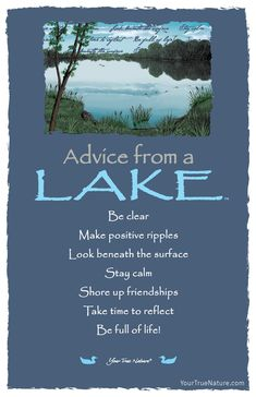 Advice from a Lake- Postcard- Your True Nature Great Quotes, Inspirational Quotes, Motivational, Lake Quotes, Fox Quotes, Reiki, Advice Quotes, Life Advice, Wisdom Quotes
