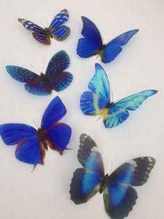 Blue 3D Butterflies Butterfly Home Decor by MyButterflyLove