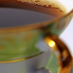 Grow Black Tea in Your Garden - FineGardening