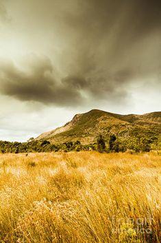 Colourful landscape scene of foreground grassland meeting stormy mountains. Gormanston, Tasmania, Australia by Ryan Jorgensen