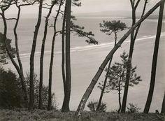 bay at breton atlantic coast, albert renger-patzsch, 1940