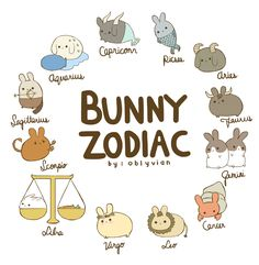 oblyvian: the bunny zodiac ✿☽ which one are you? i'm a gemini bunny ♡ edit: i put aquarius and capricorn in the wrong order sorries :~(
