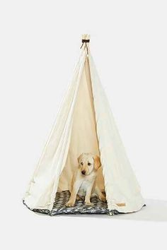 Growler Goods Saguaro Dog Tent - Urban Outfitters