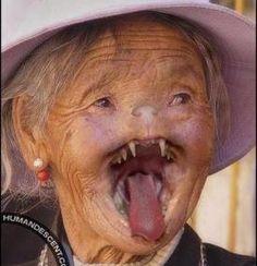 vampire grandma