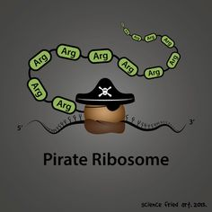 Pirate Ribosome Art Print