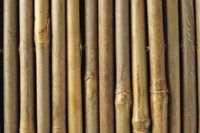 How to Treat Raw Bamboo for Making Furniture | eHow