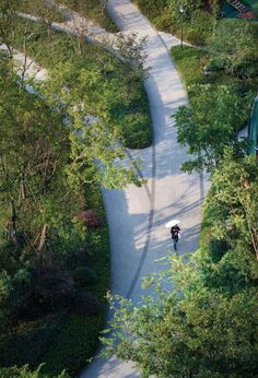 Pengbu Central Commons | Hangzhou, China | PLAT Studio What Is Landscape, Public Space Design, Outdoor Living Rooms, Tree Canopy, Landscape Fabric, Hangzhou, Urban Life, West Lake, Pavement