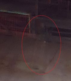 The Ghostly News | Is this the ghost of a Victorian worker prowling the deserted halls of a Scottish colliery?