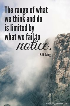 """""""The range of what we think and do is limited by what we fail to notice."""" R.D. Laing"""