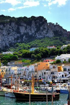 Capri et de la Villa San Michele le Port Places Around The World, Oh The Places You'll Go, Travel Around The World, Places To Travel, Places To Visit, Around The Worlds, Capri Italia, Positano, Wonderful Places