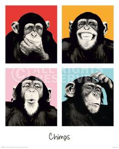 XENOS Poster: The Chimp - pop online te koop. Bestel je poster, je 3d filmposter of soortgelijk product Deco Panel 40x50
