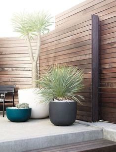 Garden Screening Ideas - Screening can be both ornamental and also functional. From a well-placed plant to maintenance totally free fence, here are some creative garden screening ideas. Large Backyard Landscaping, Backyard Garden Design, Patio Design, Backyard Patio, Landscaping Ideas, Desert Landscape Backyard, Modern Backyard Design, Exterior Wall Design, Inexpensive Landscaping