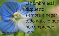El hombre está dispuesto siempre a negar todo aquello que no comprende Pascal