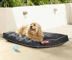 MOJO LARGE Black, Burgundy or Chocolate DOG / CAT BEAN BAG BED in Home & Garden, Pet Supplies, Dogs | eBay 120x80x16 $69