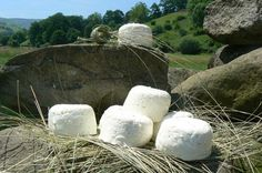 Queso fresco pasiego, Cantabria, Spain