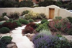 Santa Fe style front yard; WaterWise Landscapes Inc. (Landscapes page 5)