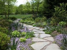 This bluestone path provides a transition between the front yard and back yard. Creeping thyme and more flowering plants fill the gaps between the stones.