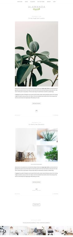 Alamanda - A WordPress Blog Theme by NadaNora on @creativemarket
