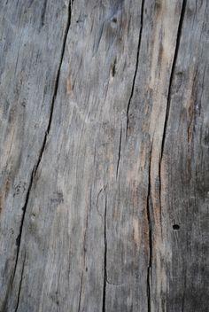 grain. | #wood