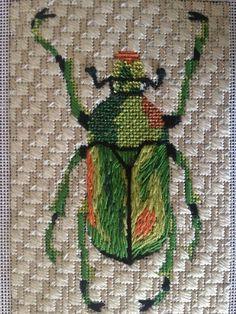 Melissa Shirley Designs Beetles. 2 of 6