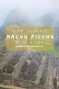 How to Visit Machu Picchu with a Dog - Long Haul Trekkers Peru Travel, Dog Travel, Mexico Travel, Travel Tips, Travel Articles, Travel Advice, Inca, South America Travel, Long Haul