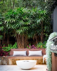 Looks like we might get the fire pit going again. If we're lucky enough to spend our weekend in this courtyard, we're more than happy to. Garden design & Construction Plants supplied by Photography Corporate Partner & member Garden Seating, Outdoor Landscaping, Event Photography, Garden Paths, Outdoor Dining, Garden Design, Exotic, Palm, Tropical