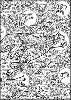 Welcome to Dover Publications Creative Haven Untamed Designs Coloring Book                                                                                                                                                     More