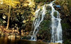 Explore: The Great Smoky Mountains