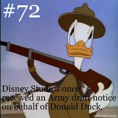 Disney Studios once received an Army draft notice for Donald Duck! :) He would have proudly served. Disney Fun Facts, Disney Memes, Disney Quotes, Cute Disney, Disney Girls, Princess Disney, Disney Princesses, Disney Characters, Disneyland Secrets