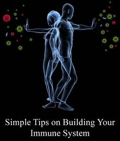 Simple Tips On Building Your Immune System