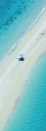 Pantone Blue Radiance |  Hayman Island...Great Barrier Reef, Australia