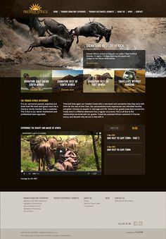 Premier Africa website concept design by Yorkhill Creative // #UI #website #southafrica