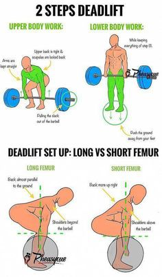 Leg Day Workouts, Weight Training Workouts, Gym Tips, Gym Workout Tips, Street Workout, Barbell Deadlift, Fitness Studio Training, Fitness Gym, Workout Exercises