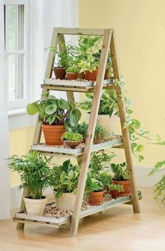 Trap als tuintje. Dit vind ik leuk als verplaatsbaar kruidentuintje. Dicht bij de tuindeur in de zon zetten.
