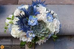 Hand Tied Wedding Bouquet Showcasing: Several Varieties Of White Roses, White Freesia + Buds, Blue Eryngium Thistle, Blue Delphinium, Green Succulents & Greenery/Foliage Delphinium Bouquet, Blue Delphinium, White Spray Roses, White Roses, White Wedding Bouquets, Wedding Flowers, Bridesmaid Bouquets, Bouquet Wedding, Bridesmaids