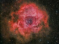The Rosette Nebula on Flickr.