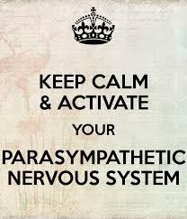 how to activate parasympathetic nervous system - Google Search