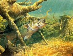 ~V_Gone fishing~M Susinno Fishing Girls, Gone Fishing, Wildlife Paintings, Wildlife Art, Fish Quilt Pattern, Quilt Patterns, Bass Fishing Pictures, Fish Artwork, Bass Fishing Lures