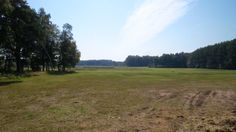 2015-08-23 Aan het eind van de rode wandeling over de Tongerense Heide ligt deze mooie veenweide