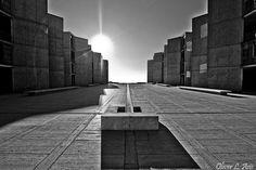 Salk institut