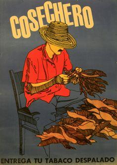 Vintage cigar art