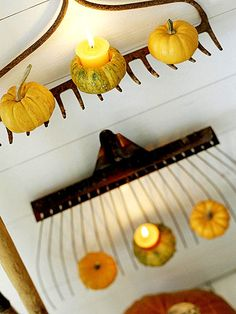 Repurposed Rakes: These rake heads easily double as shelves for fall gourds, providing fun decorating space while reusing old materials. Plus, versatile gourds can remain on display from Halloween to Thanksgiving. Thanksgiving Decorations, Seasonal Decor, Outdoor Thanksgiving, Autumn Decorations, Thanksgiving Celebration, Thanksgiving Ideas, Fall Crafts, Holiday Crafts, Holiday Ideas
