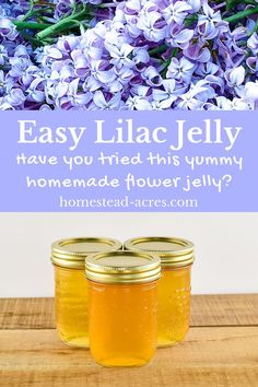 Lilac Jelly: How To Make Lilac Flower Jelly - - How to make lilac jelly! You'll love this easy to make flower jelly recipe. Enjoy using these edible flowers to make a unique canning recipe that makes a great gift idea too! Jelly Recipes, Jam Recipes, Canning Recipes, Cooker Recipes, Delicious Recipes, Lilac Flowers, Edible Flowers, Edible Plants, Purple Roses