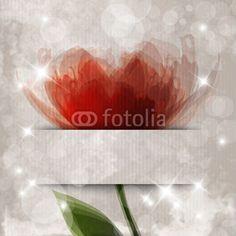Sfondo con fiore arancione - Orange flower background