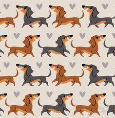 Just created this cute dachshund pup pattern! Added it to my online shop! Hoping to create additional dog breed patterns in the future! Arte Dachshund, Dachshund Love, Winnie Dogs, Cute Screen Savers, Dog Stencil, Dog Wallpaper, Pattern Wallpaper, Dog Illustration, Dog Breeds