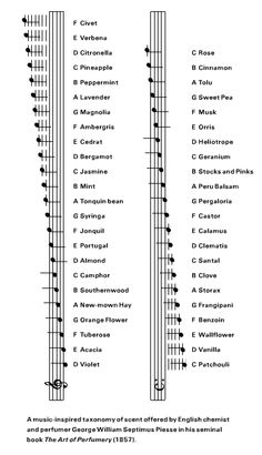 """ilovecharts: """" From Cabinet Magazine: a music inspired taxonomy of scents by George Williams Septimus Piesse, """" Guitar Tabs Songs, Guitar Chord Chart, Guitar Sheet Music, Piano Music, Piano Lessons, Music Lessons, Guitar Lessons, Music Math, Music Pictures"""
