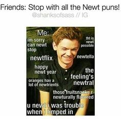 images of the maze runner imagine images Maze Runner Thomas, Newt Maze Runner, Maze Runner Funny, Maze Runner Movie, Maze Runner Quotes, Maze Runner Trilogy, Maze Runner Series, Teen Wolf Memes, Thomas Brodie Sangster