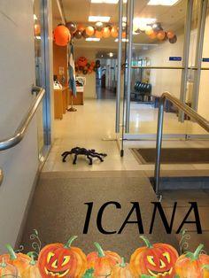 Mientras en #ICANA nos preparamos para recibir #Halloween, apareció esta simpática #spider, pero no sabemos cómo se llama.  ¿Te animás a sugerir un nombre?