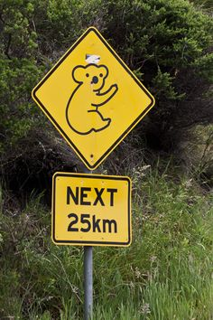 """Road sign on Cape Otway, Victoria province, Australia -- """"Today's special moments are tomorrow's memories.""""  Australia's koalas are unique and charming!  Enjoy travel tips on finding wildlife-rich locations in Australia at  http://www.examiner.com/article/astounding-nature-casts-a-spell-of-koala-magic-australia"""