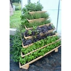 Cool planter! Looks like it's made from nested wooden boxes.